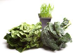 Leafy Greens are rich inVitamin K for Healthy Bones
