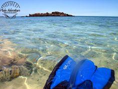 Snorkeling Tips, Big Island, Hawaii Hawaii Vacation, Hawaii Travel, Vacation Trips, Vacation Spots, Travel Usa, Vacations, Travel Tips, Kona Hawaii, Big Island Hawaii
