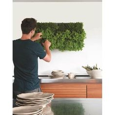 Vertical herb garden in kitchen - I can't imagine it being very easy to water inside but it is cool Herb Garden In Kitchen, Garden S, Garden Modern, Glass Garden, Indoor Garden, Indoor Outdoor, Vegetables For Babies, Types Of Herbs, Herb Garden Design