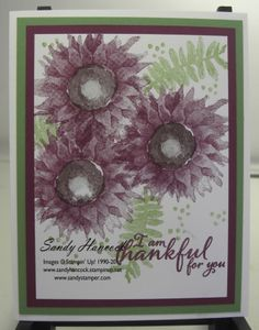 Painted Harvest Sunflowers, two more color combos on my blog today