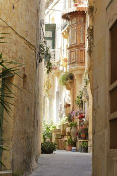 Mdina, Malta (by saladgreensee)