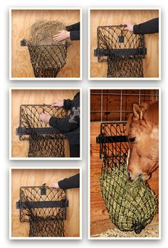 $48 Hay Hoop - collapsible wall hay feeder - easy to use and fill. JT International These seem neat and would be clean and easy to fill- GD