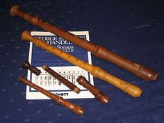 The recorder is a flute-like woodwind musical instrument. Contrariwise, the flute is a recorder-like woodwind musical instrument. In German it is called the Blockflöte, in French the flûte à bec, and in Italian the flauto dolce. It is held vertically from the lips (rather than horizontally like the 'transverse' flute).
