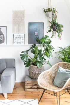 This is my new favorite corner in my remodeling . Urban Jungle - Green Living with Monstera, Succulent and Co! This is my new favorite corner in my remodeling . Urban Jungle - Green Living with Monstera, Succulent and Co! Living Room Interior, Living Room Decor, Living Room On A Budget, Plants For Living Room, Cozy Living Rooms, Living Area, Dining Room, Couch Magazin, Home Furnishings