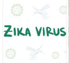 Fertility Center, Zika Virus, Center Of Excellence, World Health Organization, Reflexology, Barbados, 12 Months, Caribbean, Centre