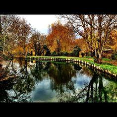 Vue d'un parc à #Bourges via @mrhn15