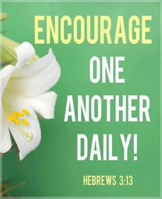 """""""Encouragement is awesome. It (can) actually CHANGE THE COURSE of another person's day, week, or life."""" ~ Chuck Swindoll """"But exhort one another daily while it is called To day; lest any of you be hardened through the deceitfulness of sin. Scripture Verses, Bible Verses Quotes, Bible Scriptures, Bible Prayers, Book Of Hebrews, Hebrews 3, Great Quotes, Inspirational Quotes, Uplifting Quotes"""