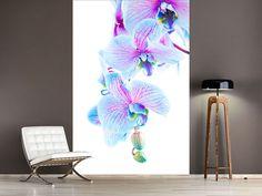 Foto #Tapete Orchideen-Schmetterling