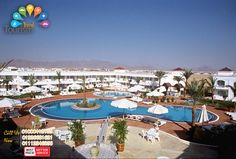 فندق #فيفا_شرم_الشيخ ★★★ 【 #ViVa_Sharm #Sharm 】 •الفندق صف ثانى من البحر مع امكانية توفير شاتيل باص .       * يحتوى على  1حمام سباحة بالأضافة الى 1 حمام سباحة خاص بالأطفال . *فيفا شرم ( شرم الشيخ – الهضبة ) :  تكلفة الفرد فى الرحلة  3ليالى \4أيام  (أفطار , عشاء) H.B في الغرفة المزدوجة  390ج تكلفة الفرد فى الرحلة  3ليالى \4أيام  (أفطار , غداء , عشاء , مشروبات , سناكس)  Soft A/I  في الغرفة المزدوجة  540ج.  هذا العرض سارى من 10/07/2016 حتى 08/09/2016