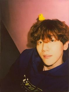 Chanyeol, Baekhyun Selca, Kyungsoo, Kokobop Exo, Jimin, Kai, Young K, Kim Minseok, Exo Members
