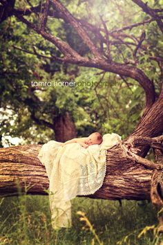 newborn baby photography outdoors tree nature LOVE this pose