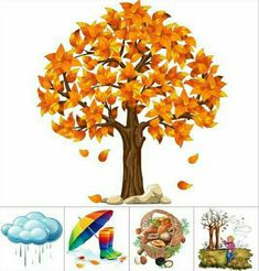 Fall Preschool, Preschool Activities, Seasons Kindergarten, Teaching Weather, Beautiful Landscape Wallpaper, Seasons Activities, Fall Art Projects, Fall Patterns, Kids Pages