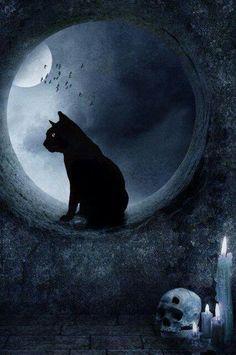 Dark Halloween night