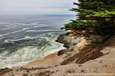 Here Are 5 Amazing Hikes in Half Moon Bay | Mill Rose Inn