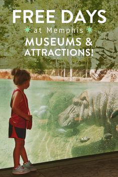 Coming to Memphis on a budget? Plan your vacation or getaway around these special free days that our museums and attractions offer! · Memphis Travel · Memphis Zoo · Graceland · Stax Museum · Dixon Gallery and Gardens · Brooks Museum · Peabody Ducks · National Civil Rights Museum · Tennessee