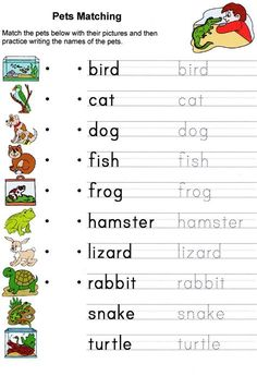 Printable English Worksheets, English Worksheets For Kids, English Activities, Esl Worksheets For Beginners, Animal Activities For Kids, Spelling Activities, Animals For Kids, Summer Activities, Animal Worksheets