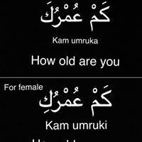 Language Study, English Language Learning, Arabic Language, Learn A New Language, Arabic Phrases, Urdu Words, Arabic Words, Arabic Sentences, Arabic To English Translation