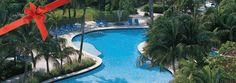 emktg: Radisson Aruba offering Holiday Sale - 20% off - http://taylormadetravel.agentarc.com  taylormadetravel142@gmail.com  call 828-475-6227