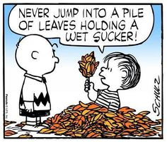 """A bit of wisdom from Linus in Charles Schulz's comic strip. and reprised in """"It's the Great Pumpkin, Charlie Brown"""" on TV. Peanuts Cartoon, Peanuts Gang, Schulz Peanuts, Peanuts Comics, Snoopy Love, Snoopy And Woodstock, Charlie Brown And Snoopy, Happy Fall Y'all, My Guy"""