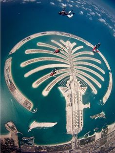 Skydive Dubai...this is the Palm Islands in Dubai. They drudged sand from the bottom of the Ocean and formed these man made islands. wow!