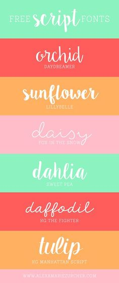 Free (and wonderful) Script Fonts from He & I blog! Add the finishing touches to your Canva creations with these beautiful fonts.