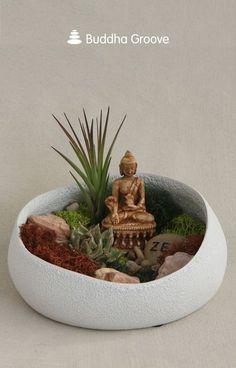 Buddha's Garden Colorful Moss Terrarium with Air Plant