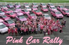 Pink Car Rally Fundraiser - Annual event raises money for wigs for young cancer patients. The 2013 Pink Car Rally raised $29,000 for their cause.
