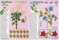 """ru / tymannost - Альбом """"Encyclopedie du point de croix ( Fleurs arbres et feuilles )"""" Le Point, Cross Stitch, Kids Rugs, Gallery, Flowers, Leaves, Punto Croce, Crossstitch, Kid Friendly Rugs"""