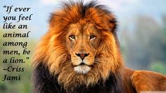 Handsome Male Lion Counted Cross Stitch by InstantCrossStitch - Tatuering Tumblr Wallpaper, Lion Wallpaper Iphone, Iphone Wallpapers, Trendy Wallpaper, Spirit Animal Quiz, Your Spirit Animal, Beautiful Creatures, Animals Beautiful, Beautiful Cats