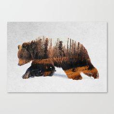 Travelling Bear Canvas Print