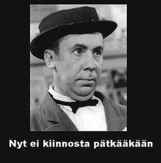 Finnish pun