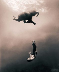 Gregory Colbert - Inspiration from Masters of Photography - 121Clicks.com