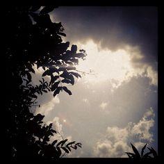 15. The sun