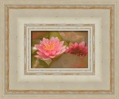 Framing suggestion for Pink Water Lily Vintage Framed Print By Fiona Craig and Lalya Alexander. #flowerphotogaphy #flowers #prints #interiordecorating #decor #artwork