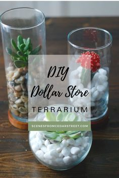 This is a perfect Dollar Store DIY for your home design! It's simple and best of all it's affordable!