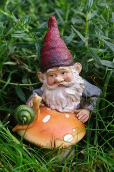 gnome gardens | passengers on a little spaceship: gnomes in the garden