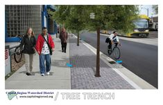 Integrated Tree Trench System