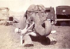 Hagenbeck-Wallace Circus 1937