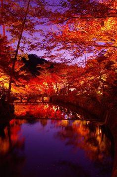 lifeisverybeautiful:Aichi Japan via 岩屋堂公園の紅葉Autumn Leaves