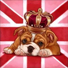 Check out the deal on Cazenave British Dog Ceramic Accent & Decor Tile - MC2-006aAT at Artwork On Tile Online Storefront