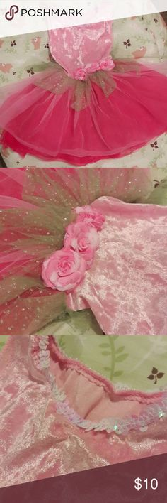 Princess Expressions Pink Velvet and Tulle Costume Gently used, Size small  Fits 6 months up to a year or just over  So beautiful and perfect for a little princess  Tulle, roses, velvet, sequins   Please message me with any questions   Thank you princess expressions Costumes
