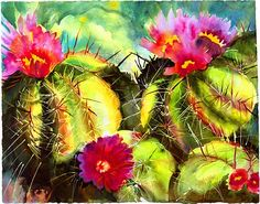 Google Image Result for http://brainytods.files.wordpress.com/2012/01/cactus-flowers.jpg