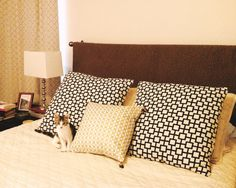 How to make a fake headboard -- hang curtain rod at desired headboard top, drape quilt or blanket over, and you're done!