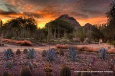 Top Ten Things to See and Do in Phoenix, Arizona - 7x7SF