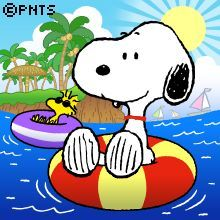 Meu Amigo Charlie Brown, Charlie Brown And Snoopy, Snoopy Images, Snoopy Pictures, Peanuts Cartoon, Peanuts Snoopy, Kids Cartoon Characters, Happy Birthday Meme, Humor Birthday
