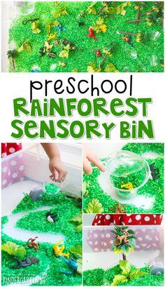 Rainforest Preschool, Rainforest Classroom, Rainforest Crafts, Preschool Jungle, Jungle Crafts, Jungle Theme Classroom, Rainforest Theme, Rainforest Animals, Amazon Rainforest
