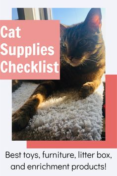 Looking for a cat essentials checklist? This detailed guide is for you! These are the best cat supplies online including natural cat toys, furniture built to last, litter box supplies that actually keep the litter box area clean, healthy cat treats, and more! I've been working with hundreds of cats and testing many cat supplies. These are the best and worth your money! Check out these fun cat enrichment supplies today! Best Cat Litter, Litter Box, Diy Cat Toys, Cat Run, Cat Hacks, Cat Sitter, Cat Condo, Cat Decor, Cat People