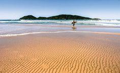 A Praia do Campeche com sua companheira mais fiel, a ilha homônima