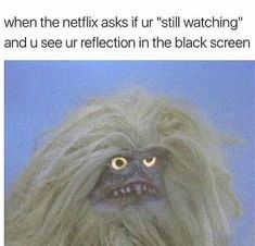 If you're a true Netflix fan, then trust me you'd damn relate with these hand-picked side-splitting memes we have picked for you. So without wasting much time, let's Netflix and Meme. Really Funny Memes, Stupid Funny Memes, Funny Relatable Memes, Haha Funny, Funny Cute, Funny Posts, Hilarious, Funny Stuff, Funny Life Memes