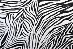 zebra pattern에 대한 이미지 검색결과